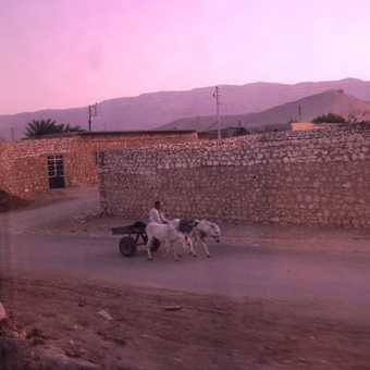 Early Morning Aswan