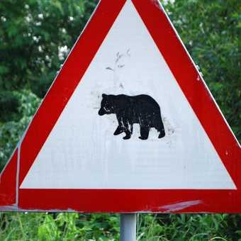 Coolest road sign ever