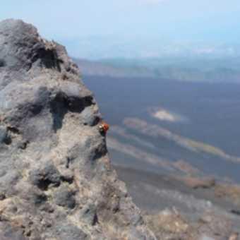 Dramatic landscape on Etna