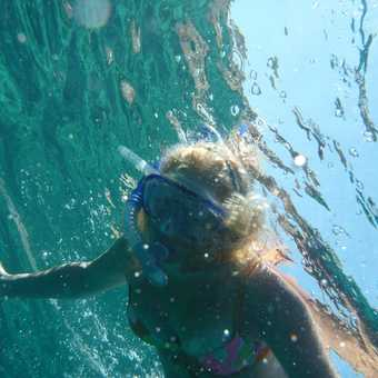 a fishes-eye view of a snorkeler