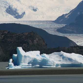 Grey Glacier, Chile