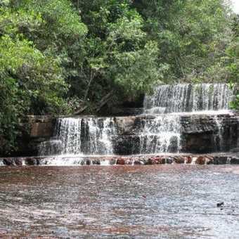 Orinono Delta, Venezuela