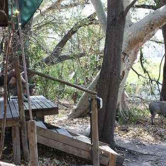Visitors at Gunn Camp - Okavango Delta