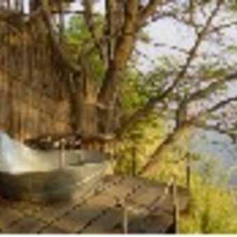 bath with a view of okavango river