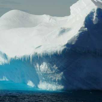 Iceberg en route Paulet