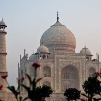 The golden Taj Mahal at sunrise.