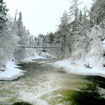 oulanka national park