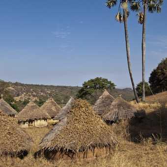 Gambian Stonehenge (Wassu Stone Circles)