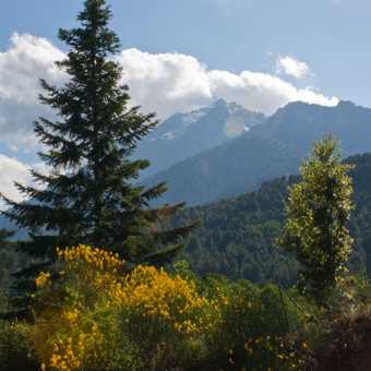 Monte d'Oru