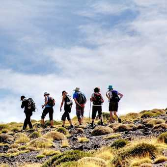 In the trekking formation