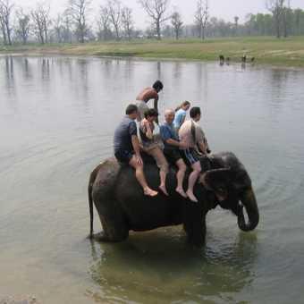 Chitwan Nepal 204