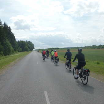 Flat, green, Estonian lands