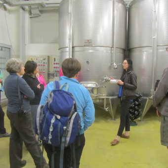 lEARNING ABOUT MAKING PROSECCO