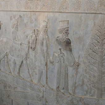 Persepolis - E Apadana staircase (Armenian gift-bearers)