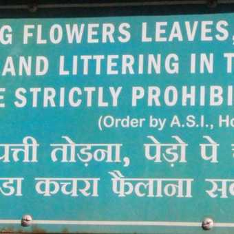 Signs - the Indian way!