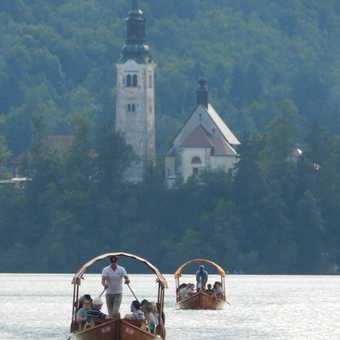 Bled, looking at Slovenia's only island