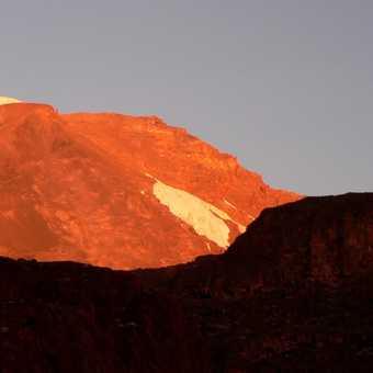 Kili sunset from Moir