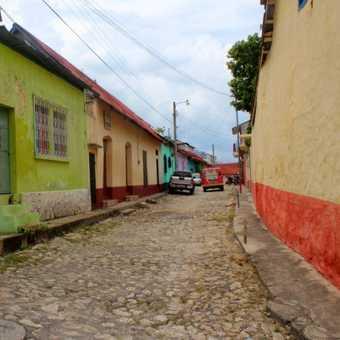 Flores street
