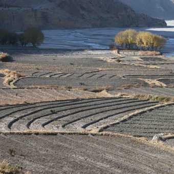 River & fields, Kagbeni