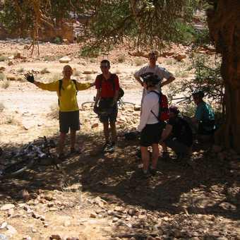 Shade and water stop. Hurray!