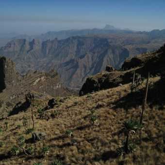 View from Imet Gogo 3926m