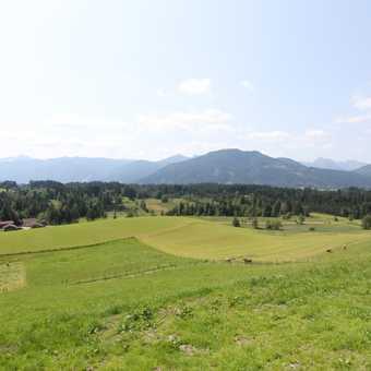 Pristine alpine meadows