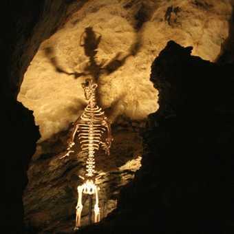 Grotta del VEnto - the Cave Bear