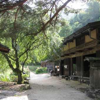 Nakasendo (Central Mountain) Way - day walk