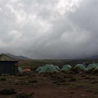 Day 2. Shira camp