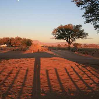 evening shadows