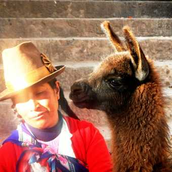 The Golden Lady of Tandapata (our street in Cusco) shrugging off a kiss from her alpaca.