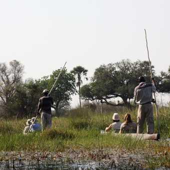 Mokoros - Okavango Delta