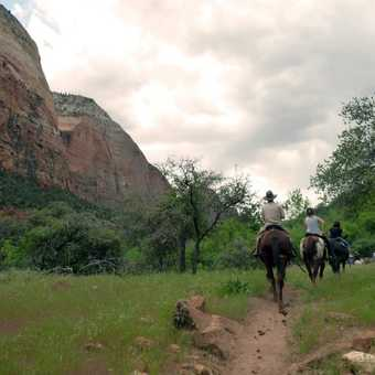Horse trails through Zion National Park