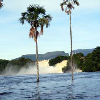 Canima Lagoon, beginning of canoe trip into Angel Falls