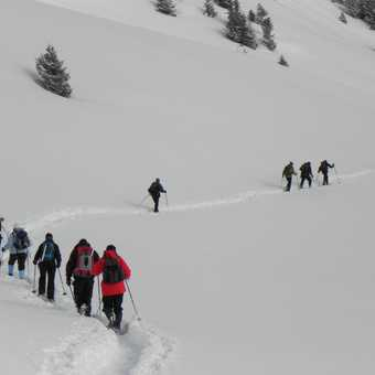 Snow Shoeing the high meadows