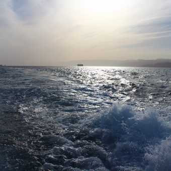 Day out on the Red Sea