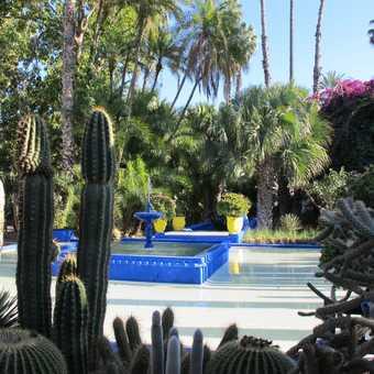 marjorelle gardens