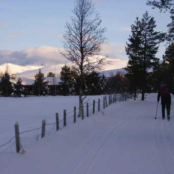 ski tracks 2