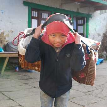 Young Sherpa