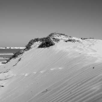 Dunes, Essaouira