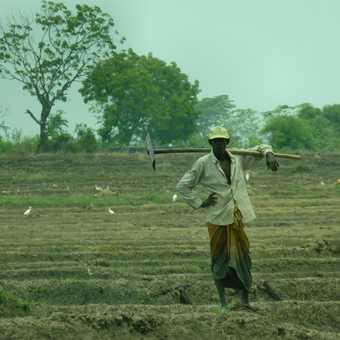 Field worker
