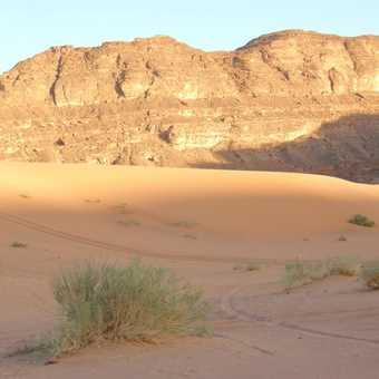 Trek to the first camp - A Barakat