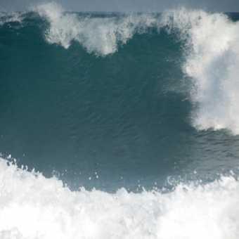 Surfer Wave - OSA