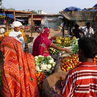 Colourful veg store