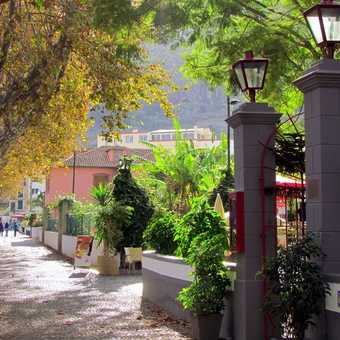 Machico Town
