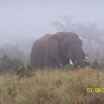 en route to Ngorongoro