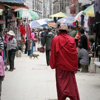 Monk at Tashilhunpo monastery