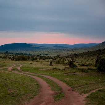 Close of business, Masai Mara