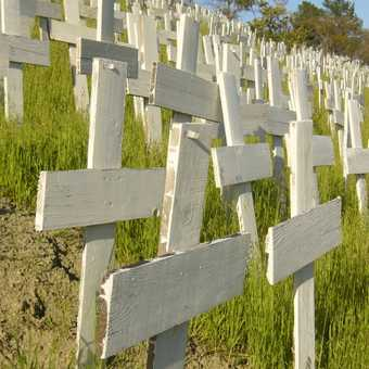Iraq Crosses