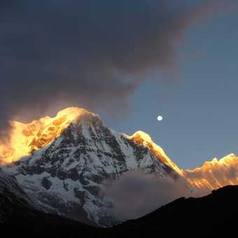 The Annapurna range from Machhupuchhare Base camp